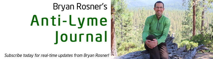 Bryan Rosner's Anti-Lyme Journal header image