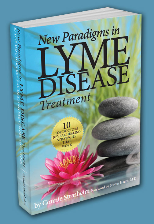 New Paradigms in Lyme Disease Treatment book cover