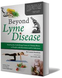 Dr  Klinghardt's 2017 Lyme Disease Treatment Protocol