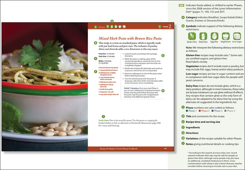 Recipes for repair lyme disease cookbook by gail laura piazza click here to view full pdf flyer sellsheet forumfinder Images
