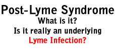 Post Lyme Syndrome